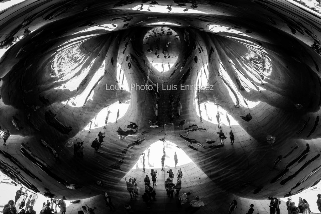 LouEPhoto blog the bean
